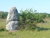 Menhirs du Coulet